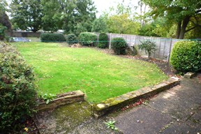 62 Metcalfe road rear garden