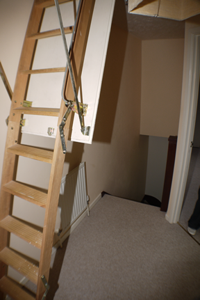 66 Hopkins Close landing and a ladder to the room
